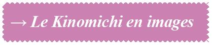 kinomichi_bouton